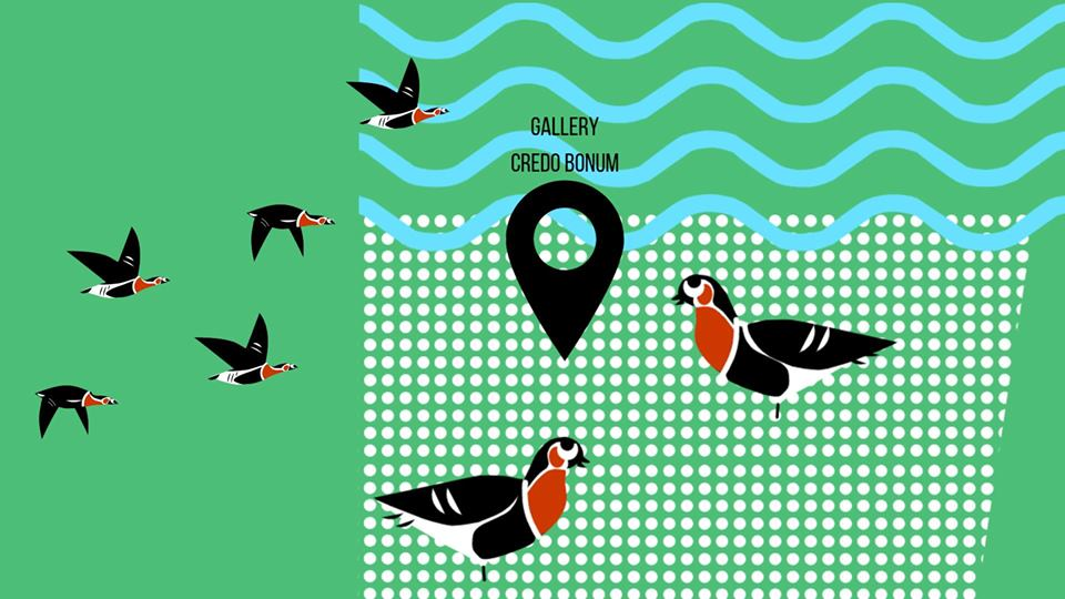 The flyway of the Red-breasted Goose