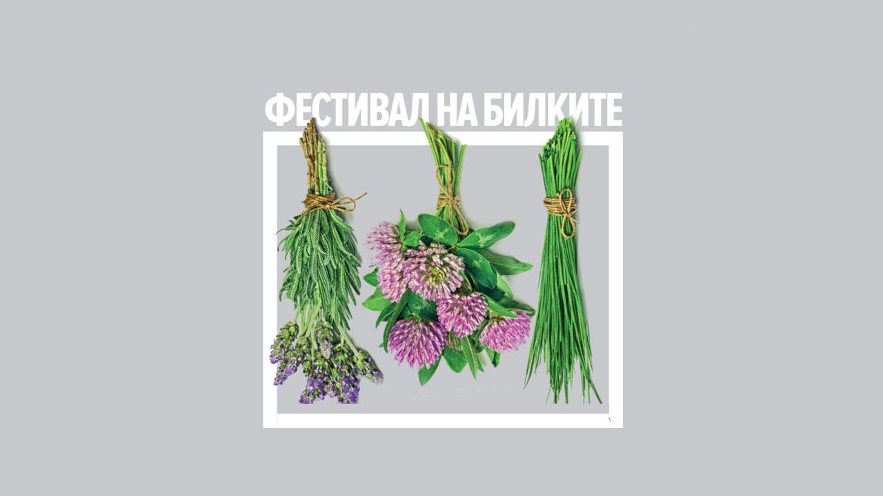 Фестивал на билките